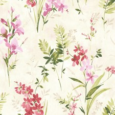 Pink Floral and Flower Wallcovering by Brewster