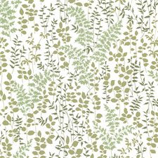 Green Kitchen and Bath Wallcovering by Brewster