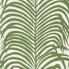 Jungle Wallcovering by Schumacher Wallpaper