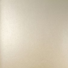 Yellow/Gold Transitional Wallcovering by JF Wallpapers