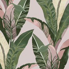 Green/Pink Contemporary Wallcovering by JF Wallpapers