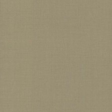 5983 Gesso Weave by York