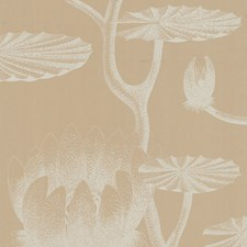 Ivory/Sand Wallcovering by Cole & Son Wallpaper