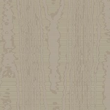 Brown/Yellow/Gold Traditional Wallcovering by JF Wallpapers