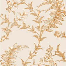 Peach Wallcovering by Cole & Son Wallpaper