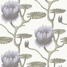 Lilac/Grn/Wt Wallcovering by Cole & Son Wallpaper
