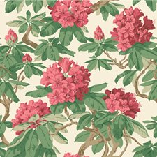 Carmine Wallcovering by Cole & Son Wallpaper