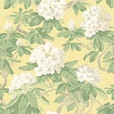 Pale Lemon Wallcovering by Cole & Son Wallpaper