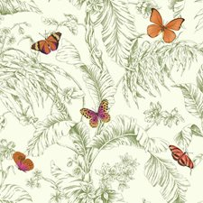 Green/Orange Animals Wallcovering by York