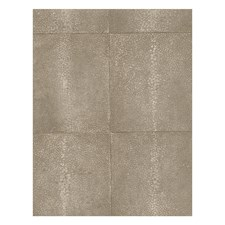 Coffee Modern Wallcovering by Andrew Martin Wallpaper