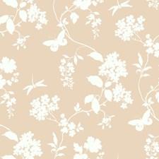Blush/Cream Botanical Wallcovering by York