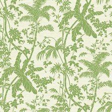 Medium Green/Cream/Beige Botanical Wallcovering by York
