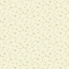 Off White/Ecru/Beige Floral Wallcovering by York