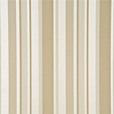 Caramel Stripes Wallcovering by G P & J Baker