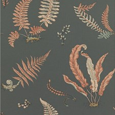 Coral/Charcoal Wallcovering by G P & J Baker