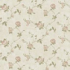 CCB02153 Darby Rose  Blush Trail by Brewster