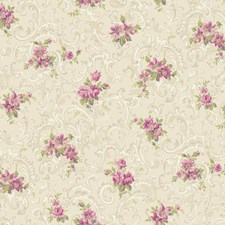 Beige/Light to Dark Pink/White Floral Wallcovering by York