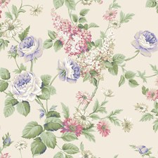 Pearlescent Cream/Pinks/Purples Floral Medium Wallcovering by York