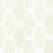CY1571 Congas Stripe by York