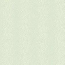 Soft Silvery Aquamarine/Pale Aquamarine/Light Taupe Bohemian Wallcovering by York