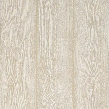 Stone Botanical Wallcovering by Threads