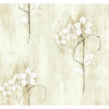 Oyster Grey/Grey-Green/Taupe Flower Wallcovering by York