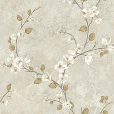 Pale Grey/Grey/White Dogwood Wallcovering by York