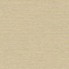 HW3624 Salish Weave by York