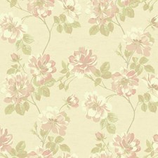 Soft Gold/Cream/Light to Dark Peach Floral Medium Wallcovering by York