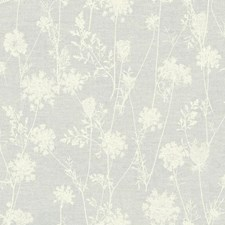 LG1380 Queen Annes Lace by York
