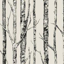 Beige/White/Grey Botanical Wallcovering by York