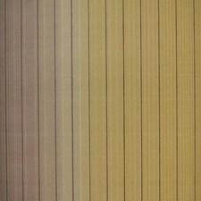MI10074 Vertical Stripe by York