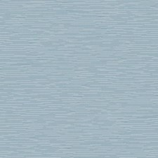 NV5583 Event Horizon by York