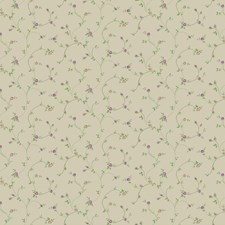 Cream/Lilac/Light Grey Floral Wallcovering by York