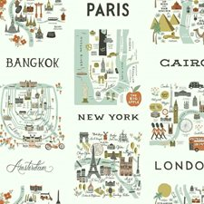 RI5160 City Maps by York
