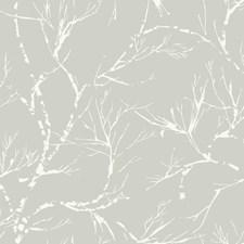 SD3774 White Pine by York
