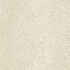 Soft Gold/White Botanical Wallcovering by York
