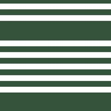 SR1618 Scholarship Stripe by York