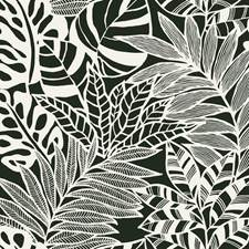 SS2575 Jungle Leaves by York