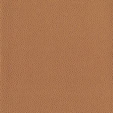 Tan Textures Wallcovering by York