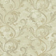 Beige/Cream/Tan Traditional Wallcovering by York