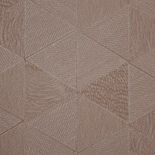 Desert Wallcovering by Innovations