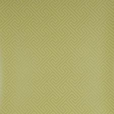 Citrus Geometric Wallcovering by Clarke & Clarke