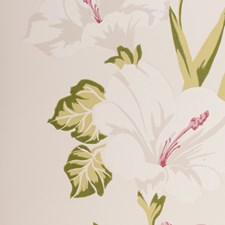Chintz Botanical Wallcovering by Clarke & Clarke