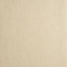 Wheat Solid W Wallcovering by Clarke & Clarke