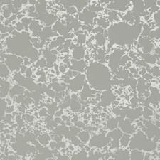 Grey/Gilver Wallcovering by Clarke & Clarke