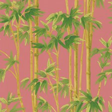 Pink/Green/Light Green Wallcovering by Kravet Wallpaper
