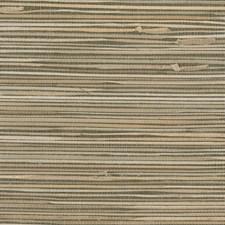 Brown/Beige Stripes Wallcovering by Kravet Wallpaper