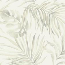 Metallic/Beige/Neutral Tropical Wallcovering by Kravet Wallpaper