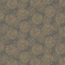 Gold/Charcoal Modern Wallcovering by Kravet Wallpaper